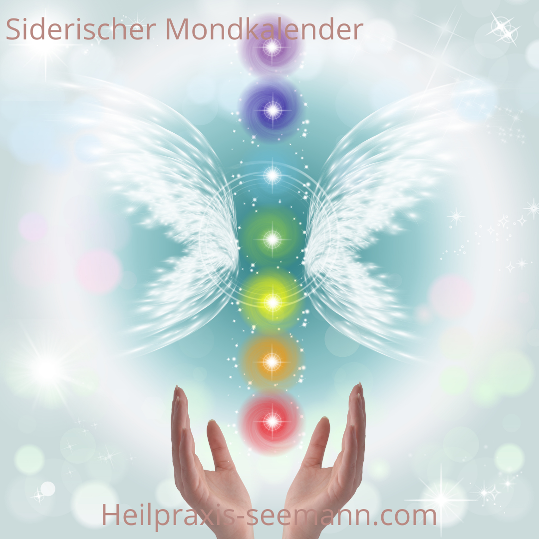 siderischer _ Vedischer Mondkalender Hasta