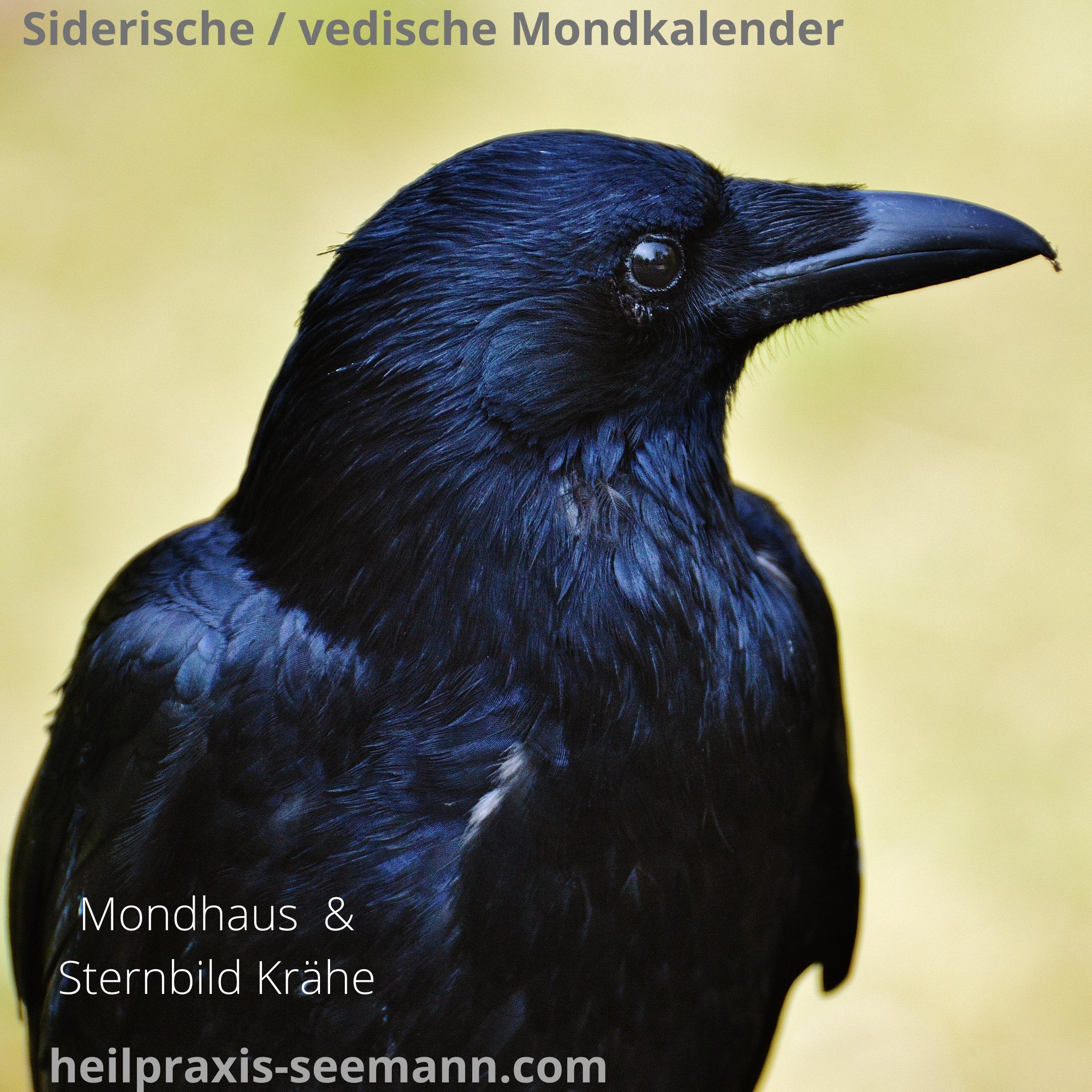Siderische Mondkalender Mondhaus Hasta
