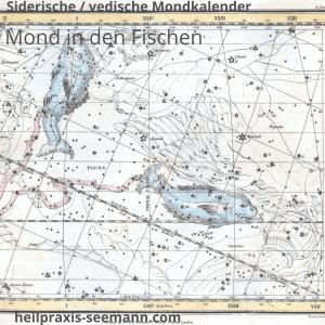 Siderische vedischer Mondkalender Mond in den Fischen