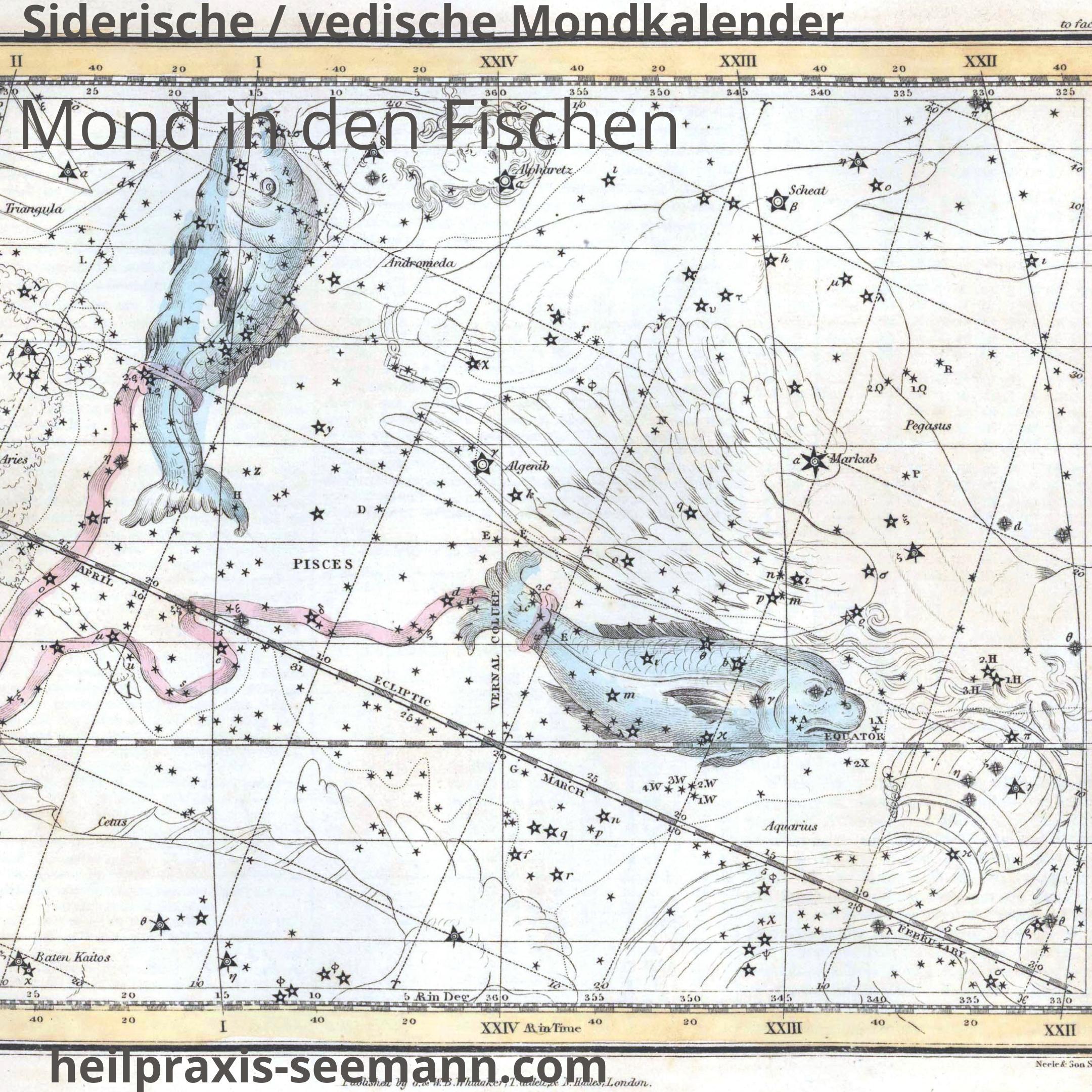 Siderische Mondkalender Mond in den Fischen